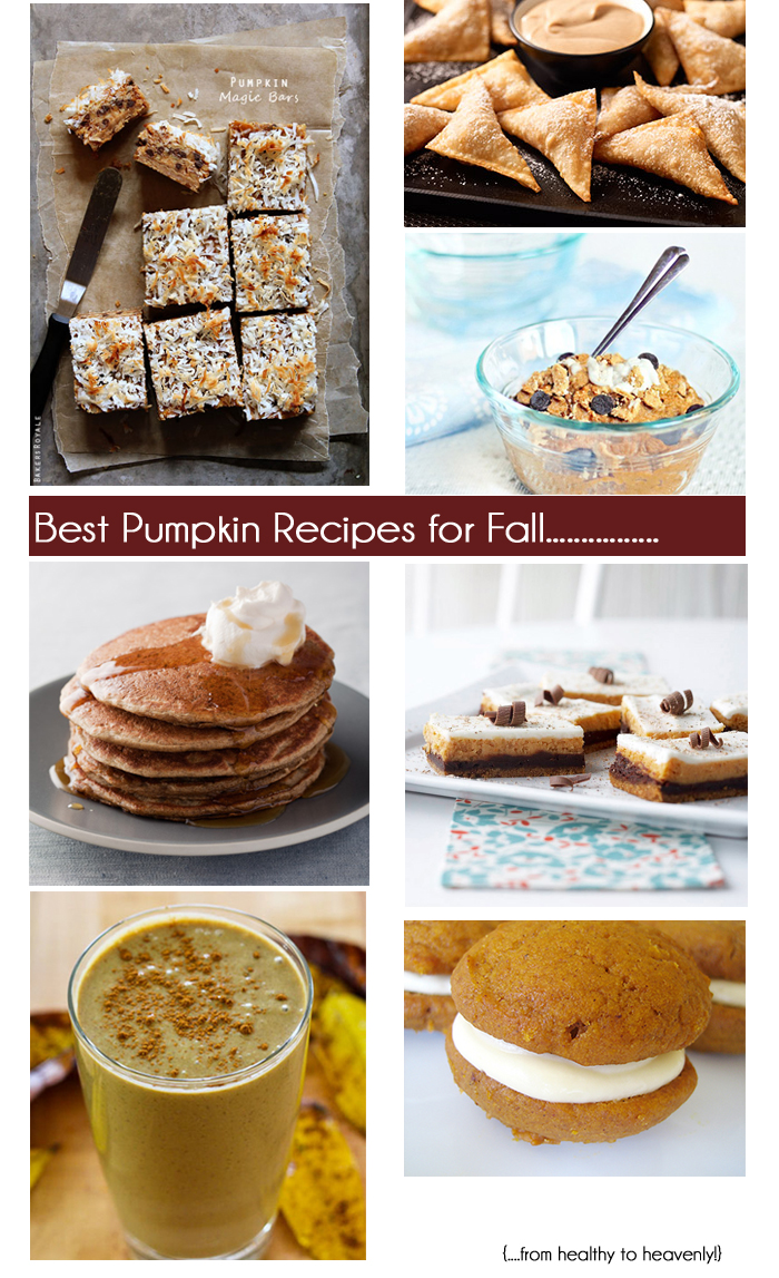 Best Pumpkin Recipes || The Average Girl's Guide