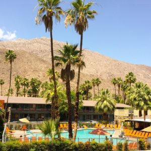 morning from Palm Springs! ☀️ #cali#palmsprings