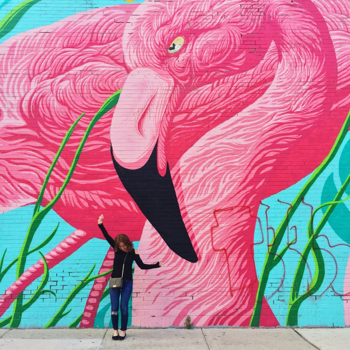 Chicago Flamingo Wall Mural