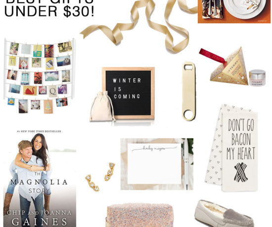 The Best Gifts Under $30 -- perfect for the hostess, teacher, secret santa, thank you and more - Christmas Gift Guide: Under $30 by popular Florida style blogger The Modern Savvy